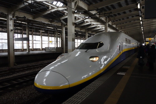 2013echigoyuzawa_77.JPG