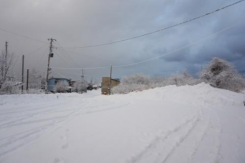 20160109tohoku2_56.JPG