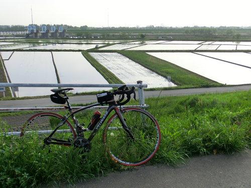 Roubaix-arakawa1204_01.JPG