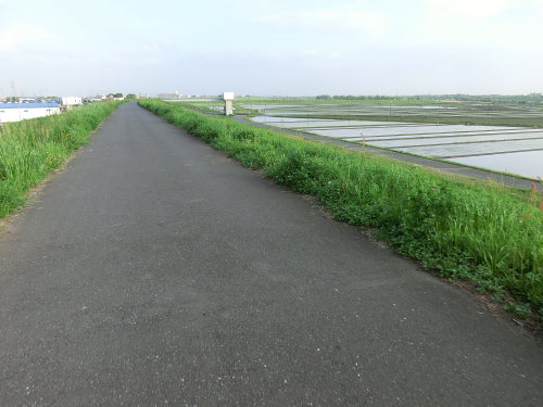 Roubaix-arakawa1204_06.JPG