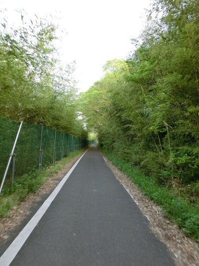 Roubaix-arakawa1204_07.JPG