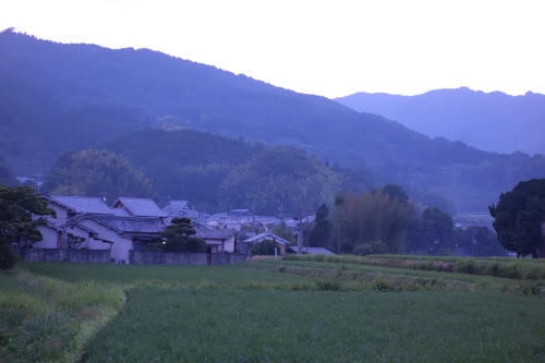 asuka2day_08.JPG