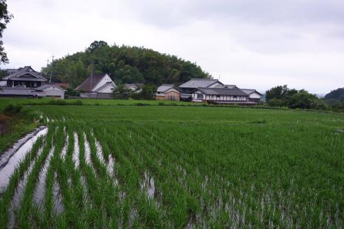 asuka3day_01.JPG
