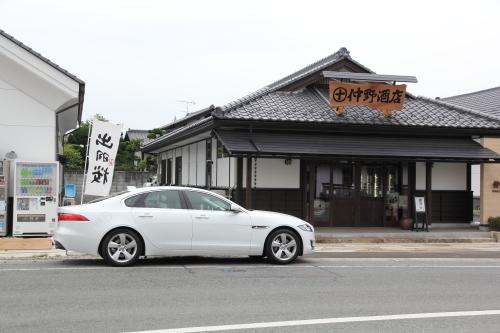 dewazakura1.JPG