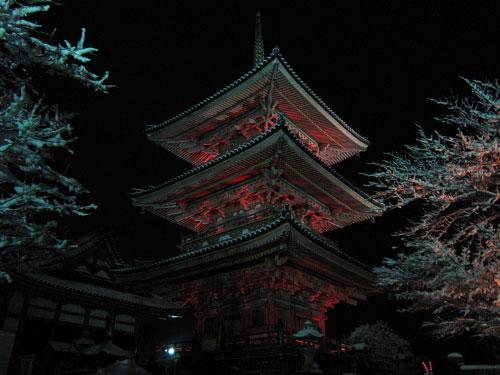 fuyu_kyoto_05.jpg