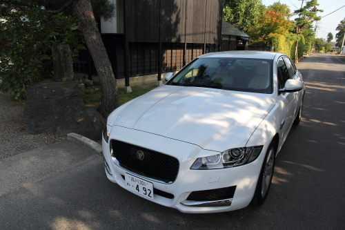 jaguar06top.JPG