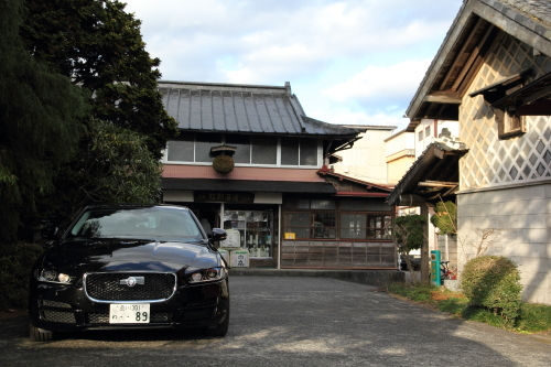 jaguar_sake_15.JPG