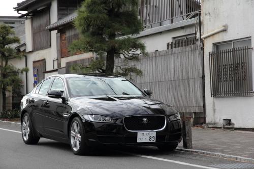 jaguar_top01.JPG