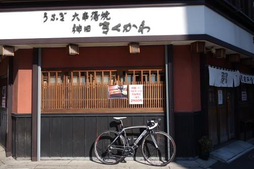 kikukawa_01.JPG