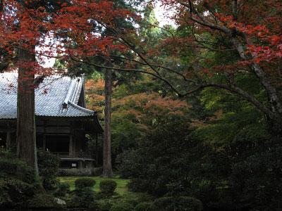 ohara_02.jpg