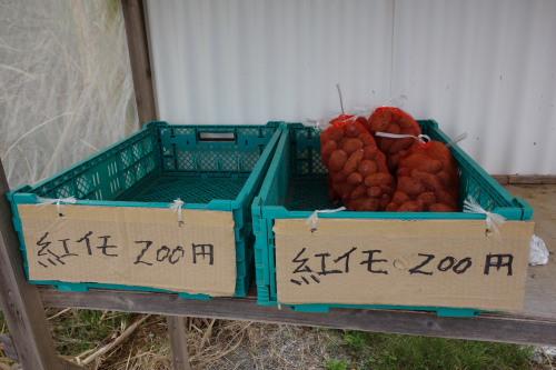 okinawa02_14.JPG