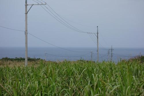 okinawa02_16.JPG