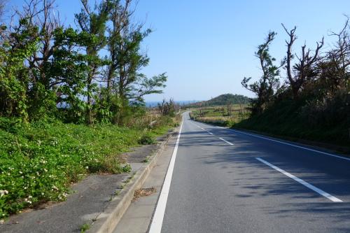 okinawa03_24.JPG