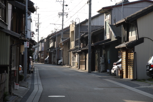oosuga_011.JPG