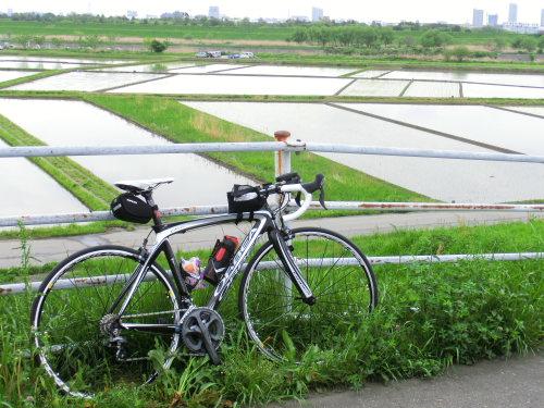 自転車道 埼玉県 自転車道 整備 : この気持ち良よい走りに一役 ...