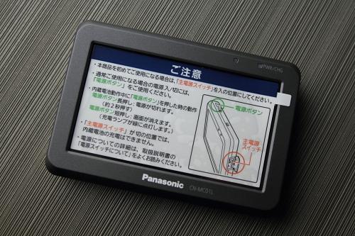 panagorila2012_04.JPG
