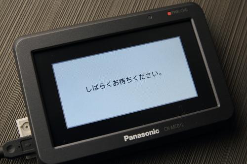 panagorila2012_07.JPG