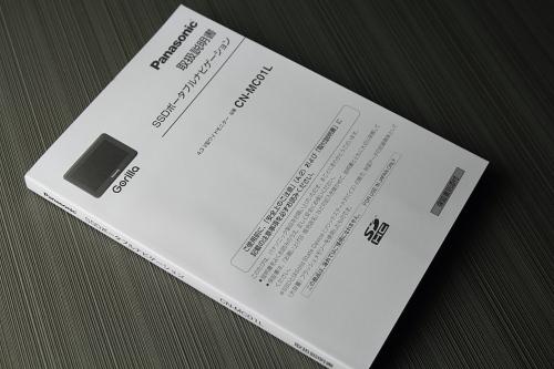 panagorila2012_18.JPG