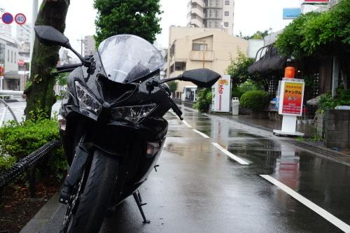 shiki_ueda_13.JPG