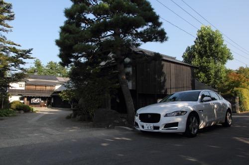 shindou_02.jpg
