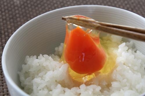 takahashi_tamago2_01.JPG