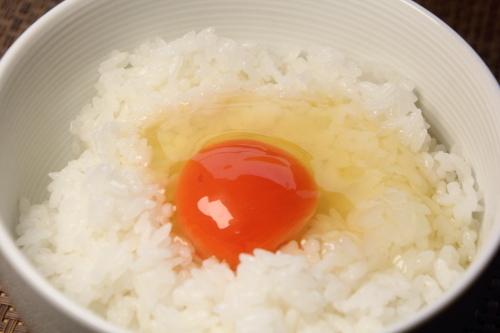 takahashi_tamago_14.JPG