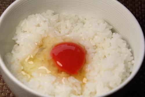 takahashi_tamago_18.JPG