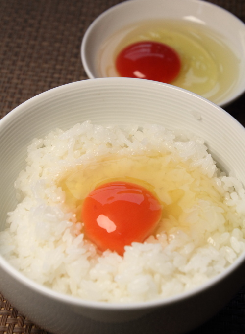 takahashi_tamago_top.JPG