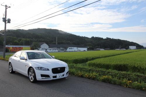 tatenogawa3.JPG