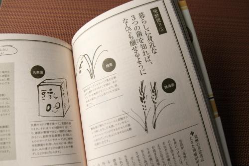 teradahonkebook_17.JPG