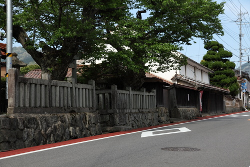 yoshiga.JPG