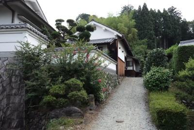 wakimoto_12.JPG
